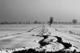 35 [25-31 stycznia] 7. Jakub Michalski – Kręta droga
