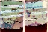 06 [Zdjęcie listopada 2009] 3. Marcin Opałczyński - Pinhole eksperyment